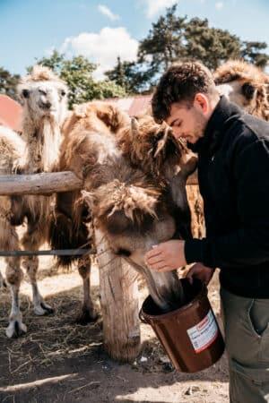 Social-Media-Shooting Tierpark Natur Tierpfleger Zoo